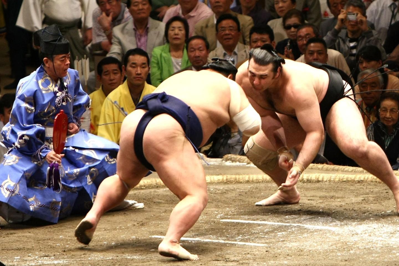 сумоисты японии фото многим